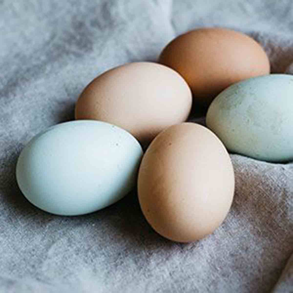 13 Reasons To Eat More Protein, eggs