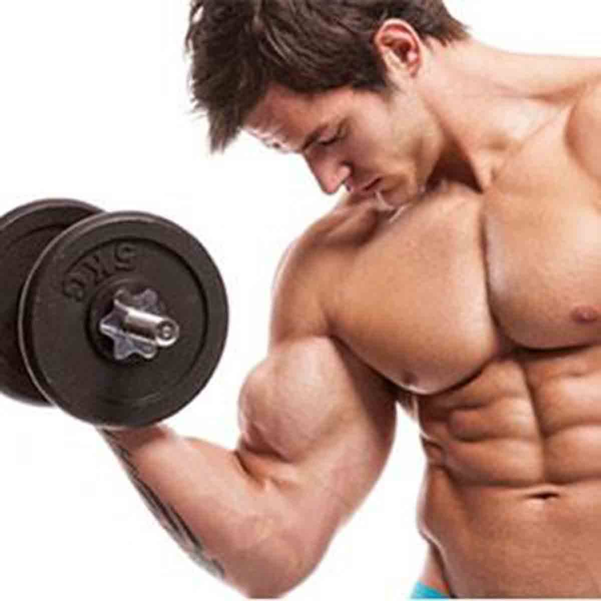 HGH Gut and Palumboism Facts and Myths, Body Building