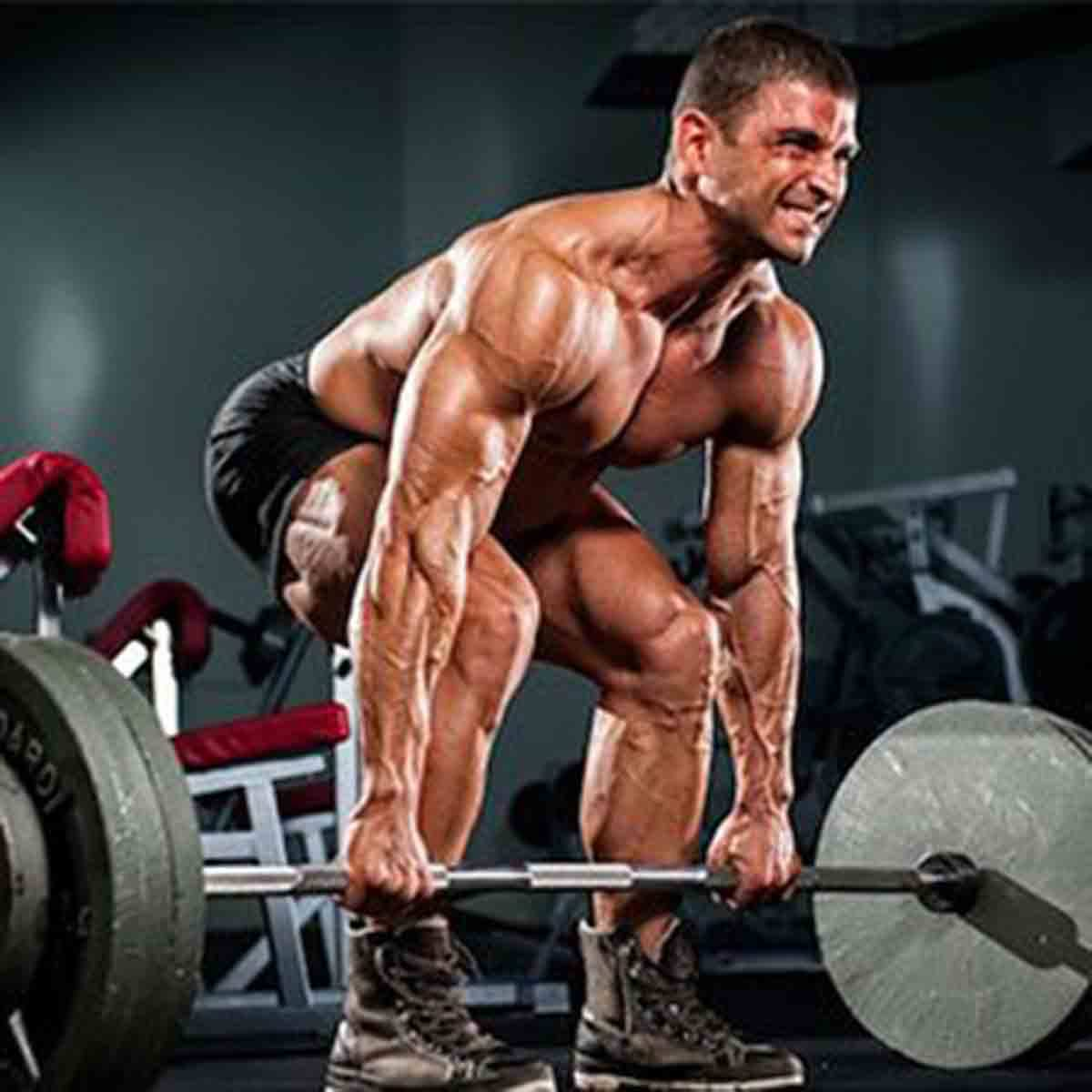 Top 8 Workout Exercises for You to Try, Deadlift