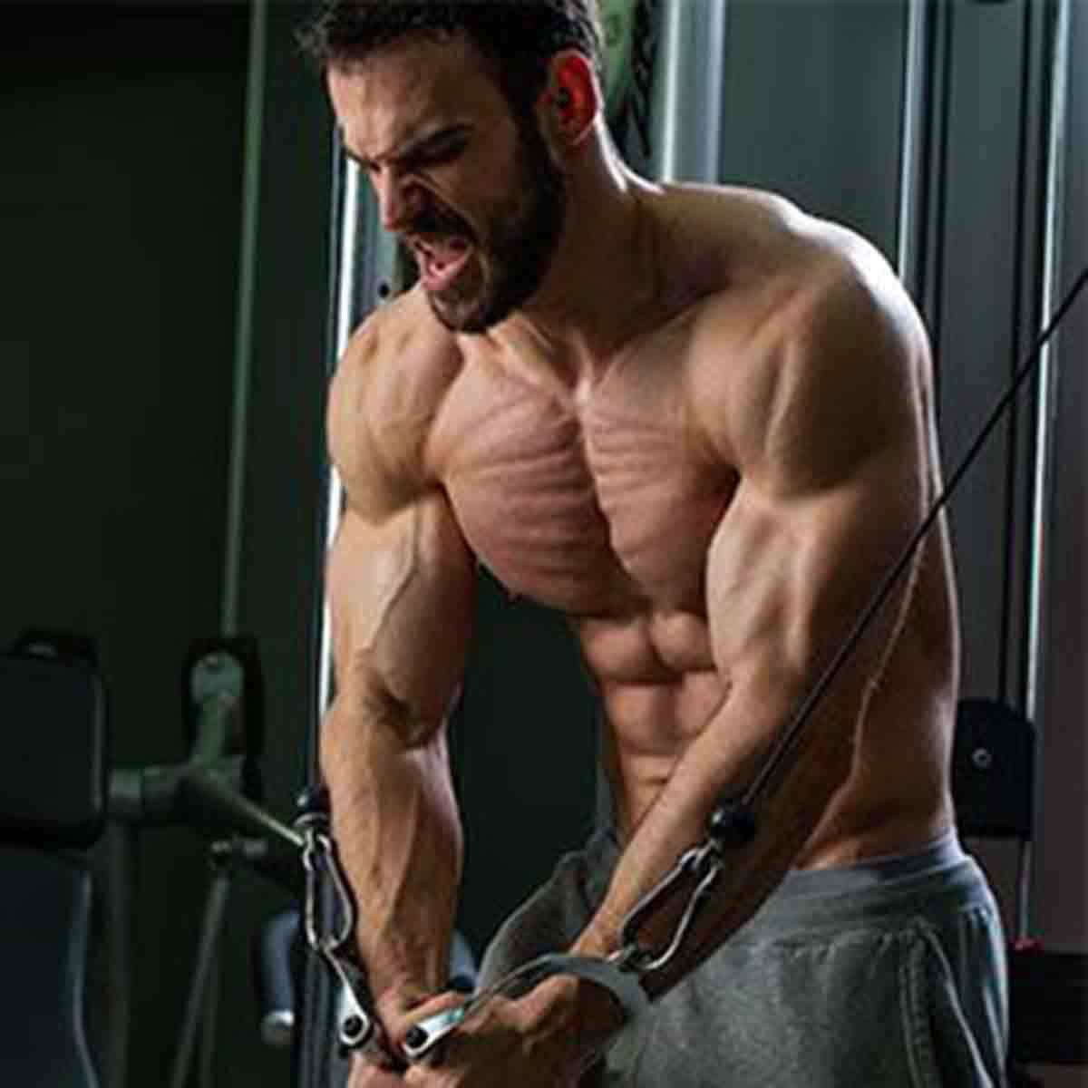 Scientifically Proven Ways To Build Muscle Quickly - Gym Workout